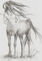 Centaur by Aaraujo