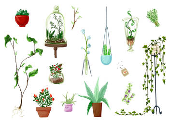 Plants by littleredhairedrobin