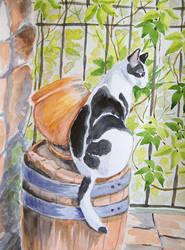Patryk cat on a barrel - watercolor by gosia-jasklowska