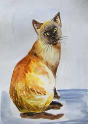 Cat watercolor by gosia-jasklowska