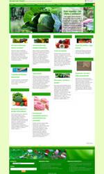Wordpress template by gosia-jasklowska