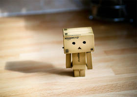 Danbo by prtphotography