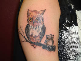 Owls by money4cocaine