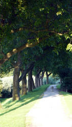 lovers lane by shades-of-art