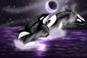 Midnight Swim by TruSpiritArt