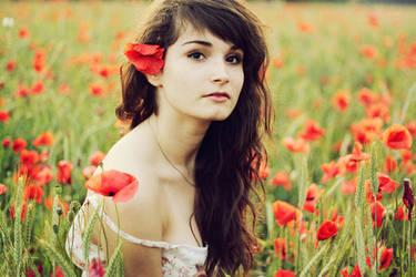 poppies by patrycjanna
