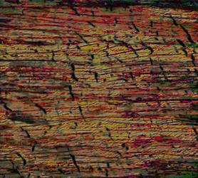 Burnt Cracked Oak by dreamlessdancer