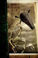 Pet Skeleton by apocryph
