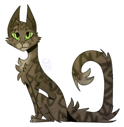 Hazelpool - Warrior Cats OC (Old) by rosealuck14