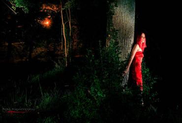 Nightfire by Leanan-Bloodflower