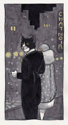 Chat Noir by cidaq