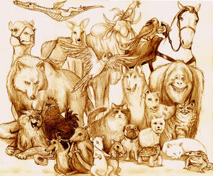 Discworld Animals by AndrewSalt