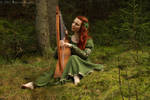 Forest Harp by Laurelin-Photography