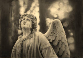 Weeping angel by stuartclark