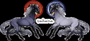 Vahana | Buck | Aspiring Herbalist by ge-oh