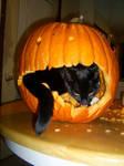 A Cat Can Carve Too by kyraal