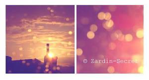 Lumiere by zardin-secret