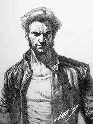 Wolverine ll_detail by oxydgenesis