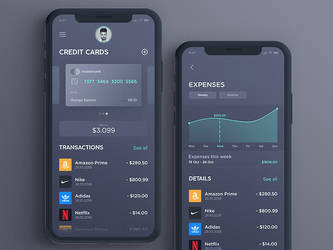 Banking App by Freestyler92