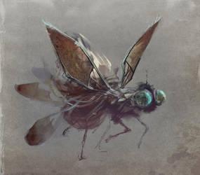 Fly by karola-j
