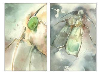 Butterflies by karola-j