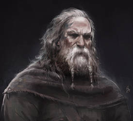 Viking Portrait by ArtofReza