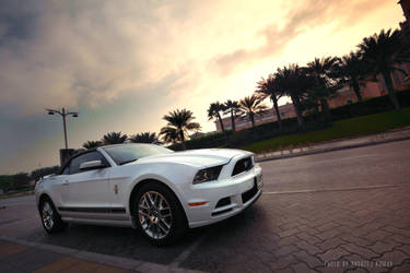 Mustang Sunrise on the Palm by UtopiaSkyPhotoWorks
