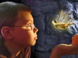 Fairy Story by wilddoug