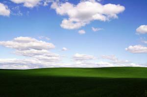 Green Field by wilddoug