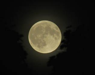 Pisces Lunar Eclipse by Anj3lla