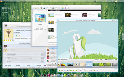KDE Screenshot - Jul 2011 by paran0idx