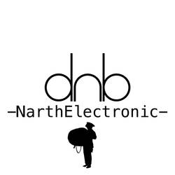 -NarthElectronic- Cover 5 by NarthArt
