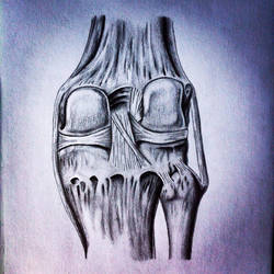 Knee Joint by RicGrayDesign