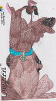 Scooby Doo 1 by RozStaw57