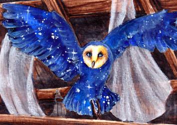 Night Owl [ATC] by NairaNorica