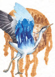 Blue Heron [ATC] by NairaNorica