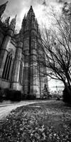 Cathedral Series - Pano by alvarola