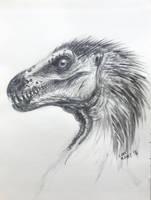 Raptor sketch by LDN-RDNT