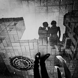 in the yard by sokova