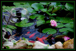 Two Lillies on Golden Pond by LadyAliceofOz
