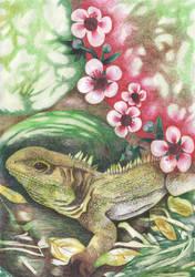Tuatara with Manuka Flowers by HelenParkinson