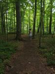 A Walk In The Woods by CelticWolfwalker