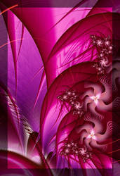 Fuchsia by theslider