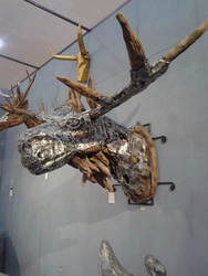 Root Elk by armb8990