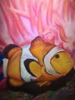 Clownfish by stephjforster