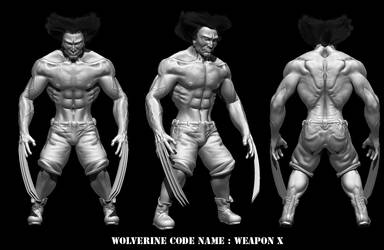 Wolverine finished by Neverwinterdragon