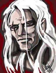 The Witcher by Neverwinterdragon