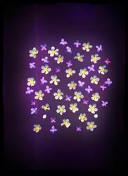 Magic light by JovialMiler