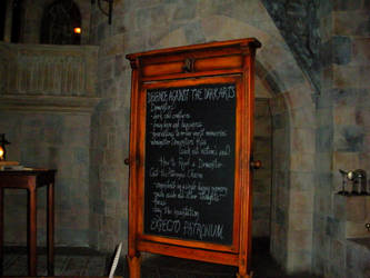 Wizarding World of Harry Potter (4) by xxtayce