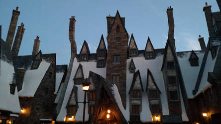 Wizarding World of Harry Potter (15) by xxtayce